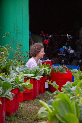 Maya sits among the harvested vegetables, chatting with the other members of the farm while sorting the produce for distribution.