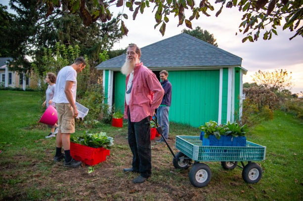 Ray Person, owner of the farm, helps gather up the harvested vegetables at the end of the night.