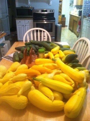 A harvest of zucchini and yellow squash at Eloheh Farm. (Photo from Randy Woodley)