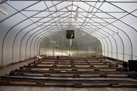 Also on Five Loaves and Two Fishes property is a greenhouse that the McKinney's son uses for his hydroponics and aquaponics projects.