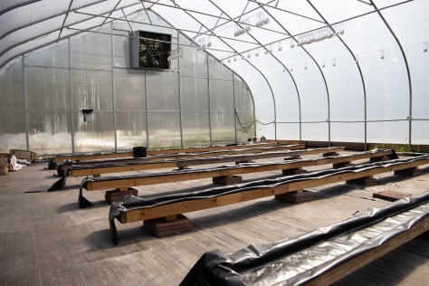 Much of the soil in McDowell county is contaminated and/or stripped. New farming techniques such as aquaponics are particularly applicable to this area, given the plants are grown in nutrient-rich water rather than soil.