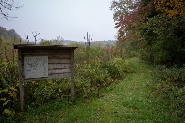 A trail on the camp grounds winds through a fen, or marshy area.