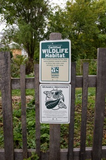 "Wendy's garden is a certified wildlife habitat. She is working to restore it to it's ""wild"" state so that it is more inviting for insect and animal life."
