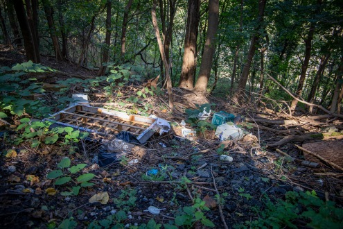 A bed frame and other household items litter the side of a hill in Allegheny County, PA.