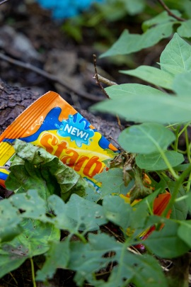 A photo of a discarded Starburst wrapper lying in the forest. Click here to view the photo essay for episode eight of season one.