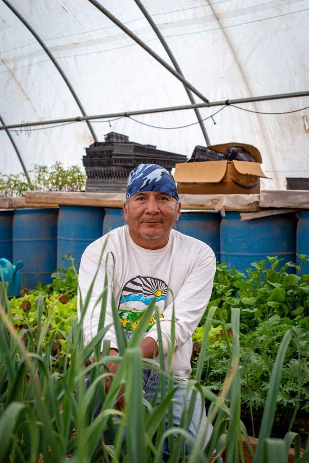 Stacey Jensen, owner of North Leupp Family Farms, sits in his greenhouse surrounded by the fruits of his labor (garlic, lettuce, and other greens).